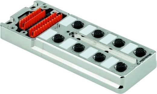 Passieve sensor-/actuatorverdeler SAI-8-MM 5P M12 UT Weidm