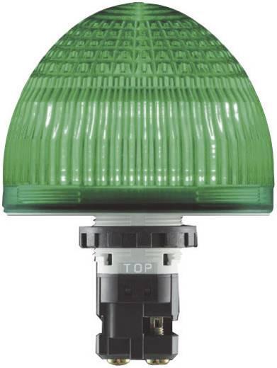 Signaallamp LED Idec HW1P-5Q4G Groen Continu licht 24 V/DC, 24 V/AC