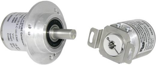 Wachendorff WDGA-36E-06-1200-SI-A-B-0-1-CB8 1 stuks 36 mm