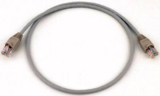 Eaton easy NT-150 256285 PLC-kabel