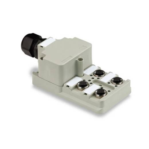 Passieve sensor-/actuatorverdeler SAI-4-M 4P M12 Weidmüller Inhoud: 1 stuks
