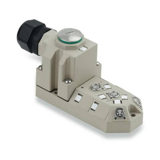 Passieve sensor-/actuatorverdeler SAI-4-M 4P M8 Weidmüller