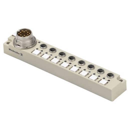 Passieve sensor-/actuatorverdeler SAI-8-S16/19P 4P M5 Weidmüller Inhoud: 1 stuks
