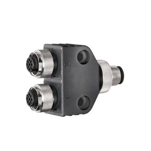 Sensor-/actuatorstekker Y-verdeler SAI-Y-5S M12/M12 2BO We
