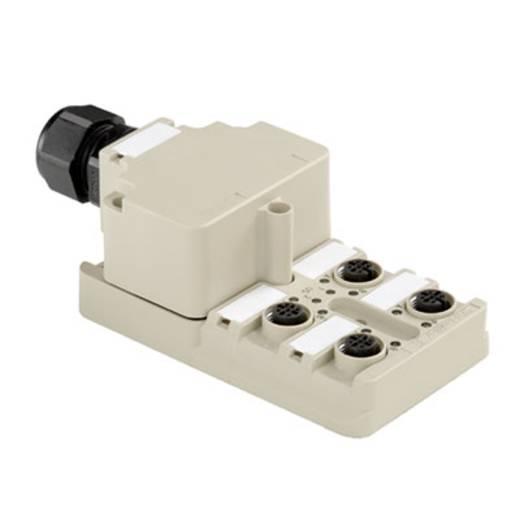 Passieve sensor-/actuatorverdeler SAI-4-M 5P M12 ECO Weidm