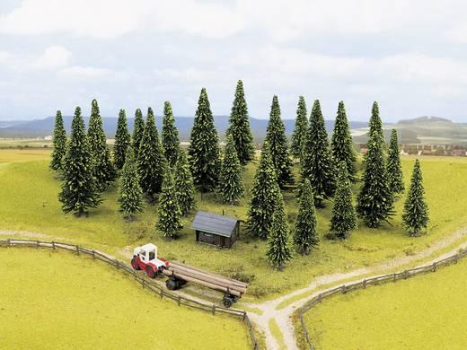 Set bomen Spar 40 tot 100 mm NOCH