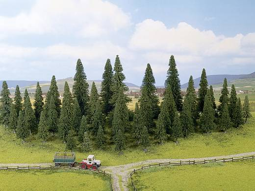 Set bomen Spar Hoogte (min.): 40 mm Hoogte (max.): 100 mm NOCH 32520 Donkergroen 25 stuks