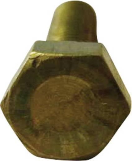 TOOLCRAFT Zeskantbouten M2 10 mm Buitenzeskant (inbus) DIN 933 Messing 10 stuks
