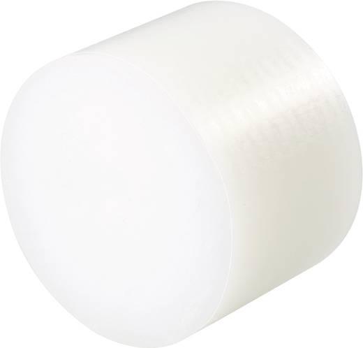 Polyamide Massieve staaf (Ø x l) 80 mm x 60 mm