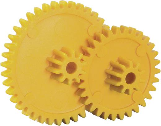 Kunststof Assortiment tandwielen Reely Soort module: 1.0 Aantal tanden: 30, 40 10 stuks