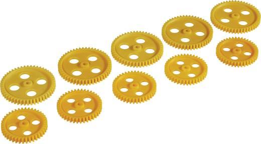 Kunststof Assortiment tandwielen Reely Soort module: 1.0 Aantal tanden: 40, 50 10 stuks