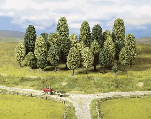 Set bomen Loofbos Hoogte (min.): 65 mm Hoogte (max.): 150 mm NOCH 26336 55 stuks