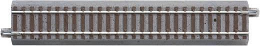 H0 Roco GeoLine (met ballastbed) 61110 Rechte rails 200 mm<