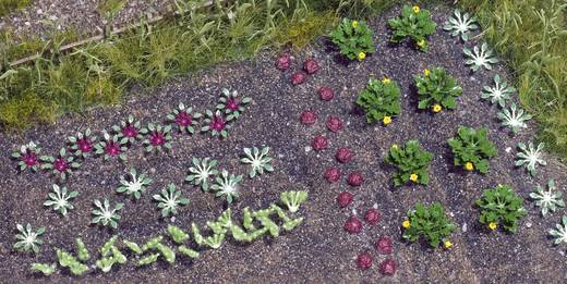 Busch 1222 H0 Groenten, Salade