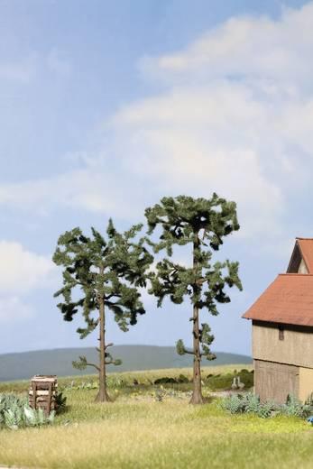 Set bomen Den Hoogte (min.): 115 mm Hoogte (max.): 135 mm NOCH 21912 Groen 2 stuks