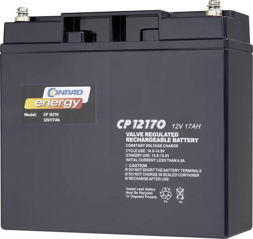 Conrad energy 250214 Loodaccu 12 V 17 Ah CE12V/17Ah Loodvlies (AGM) (b x h x d) 181 x 167 x 76 mm M5-schroefaansluiting Onderhoudsvrij