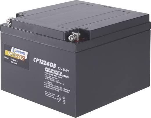 Loodaccu 12 V 24 Ah Conrad energy 250226 Loodvlies (AGM)