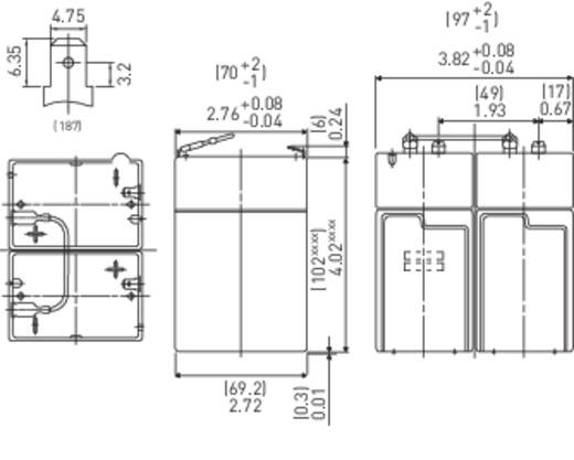 Panasonic LC-R124R5PD Loodaccu 12 V 4.5 Ah LC-R124R5P Loodvlies (AGM) (b x h x d) 70 x 102 x 97 mm Kabelschoen 4.8 mm Onderhoudsvrij