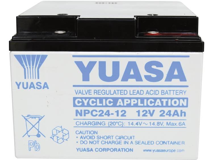 Yuasa NPC24-12 Loodaccu 12 V 24 Ah Loodvlies (AGM) (b x h x d) 175 x 125 x 166 mm M5-schroefaansluiting Onderhoudsvrij, Cyclusbestendig