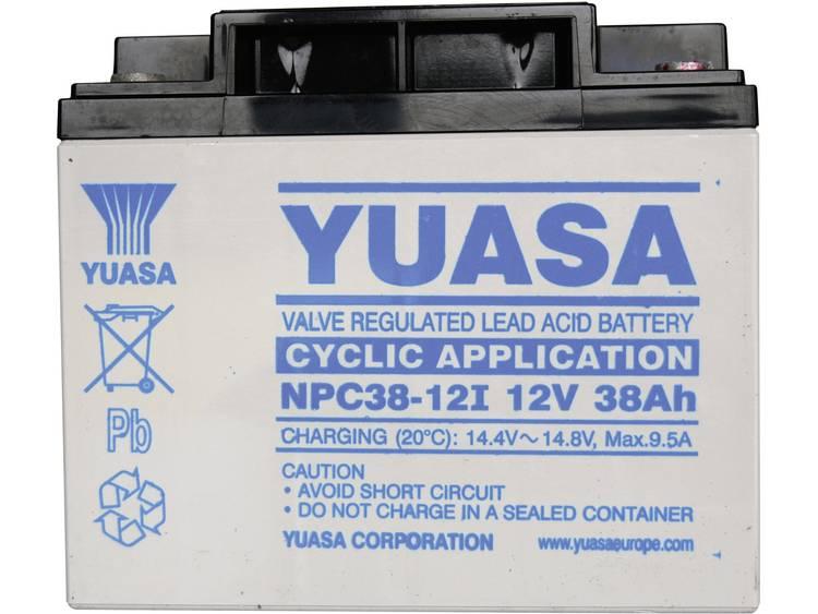 Yuasa NPC38-12 Loodaccu 12 V 38 Ah Loodvlies (AGM) M5-schroefaansluiting (b x h x d) 197 x 170 x 165