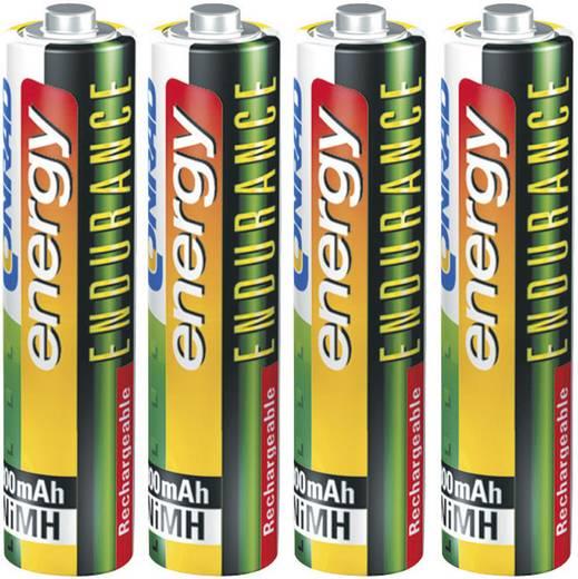 Conrad energy Endurance HR03 AAA oplaadbare batterij (potlood) NiMH 800 mAh 1.2 V 4 stuks