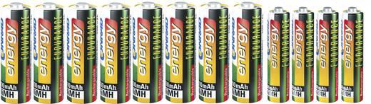 Conrad energy Set oplaadbare batterijen AAA, AA, 12 stuks