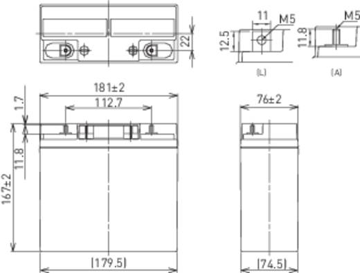 Panasonic LC-XC1222P Loodaccu 12 V 22 Ah 12 V 22 Ah Loodvlies (AGM) (b x h x d) 181 x 167 x 76 mm M5-schroefaansluiting Onderhoudsvrij, Cyclusbestendig