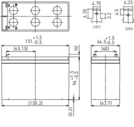 Panasonic LC-R127R2PG Loodaccu 12 V 7.2 Ah LC-R127R2PG/PG1 Loodvlies (AGM) (b x h x d) 151 x 94 x 65 mm Kabelschoen 4.8 mm Onderhoudsvrij, VDS-certificering