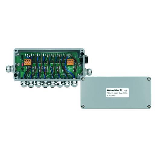 Standaardverdeler met stroombegrenzing FBCON PA CG/M12 8WAY LIMITER Weidmü
