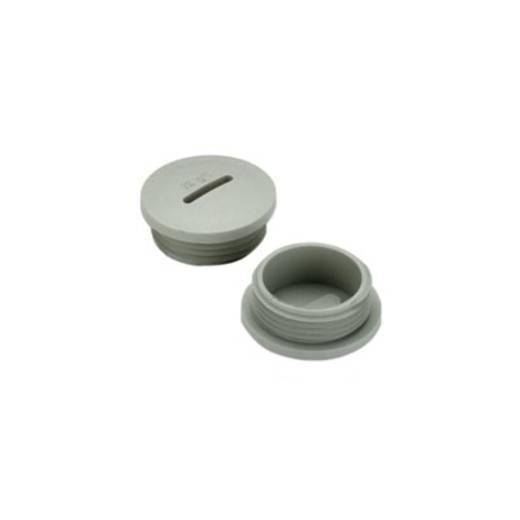 Blindstop PG21 Polyamide Lichtgrijs (RAL 7035) Weidmüller VP 21-K54 50 stuks