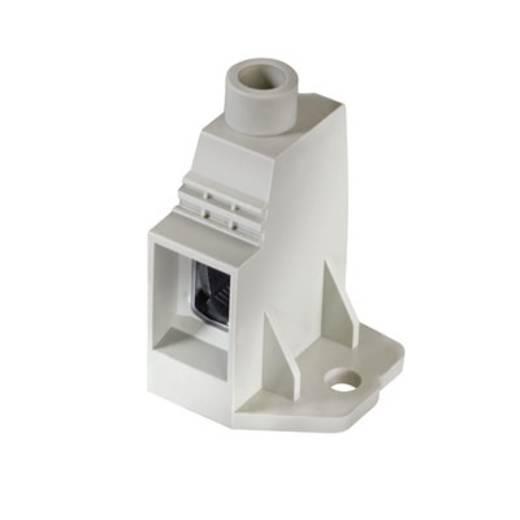 Klemschroefblok 35.00 mm² Aantal polen 1 LXXX 15.00/01/90FR 4.5SN GY BX Weidmüller Grijs 20 stuks