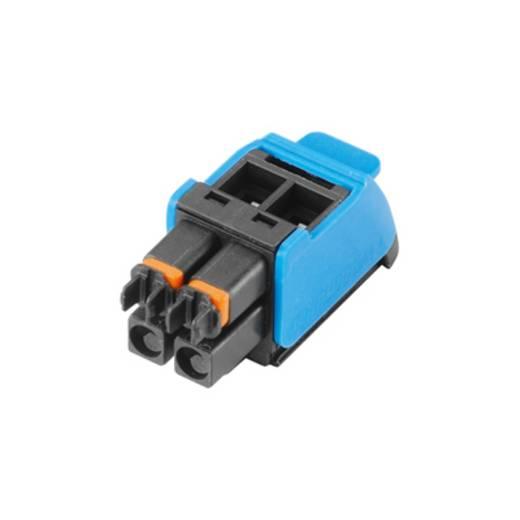 Weidmüller Connectoren voor printplaten BHZ 5.00/02/90LH BK/BL (l x b x h) 14.6 x 12.4 x 29 mm