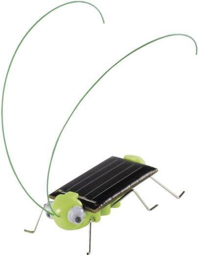 Sol Expert 46125 Solar krekel