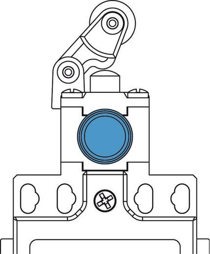 Panasonic MDM5R31Z11 Eindschakelaar 400 V/AC 10 A Zwenkbare rolhefboom vergrendelend IP66 1 stuks