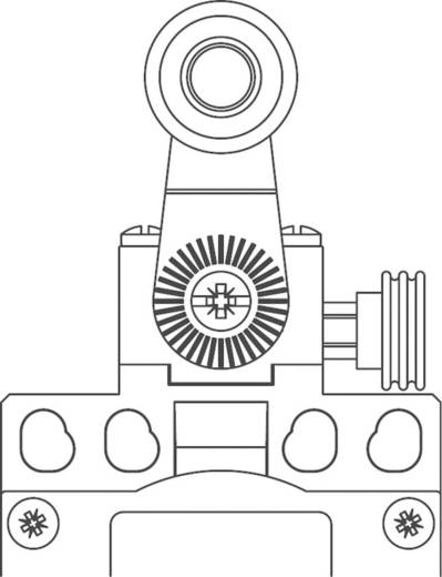 Panasonic MDP5R41Z11 Eindschakelaar 400 V/AC 10 A Rolhefboom vergrendelend IP65 1 stuks