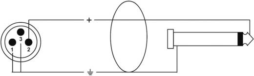 XLR Adapterkabel [1x XLR-stekker - 1x Jackplug male 6.3 mm] 10 m