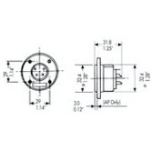 Adam Hall-connectoren - Amphenol EP serie - luidsprekerconnector 5-pol. male