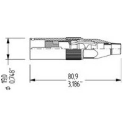 Adam Hall-connectoren - Amphenol AC-serie - XLR-stekker male