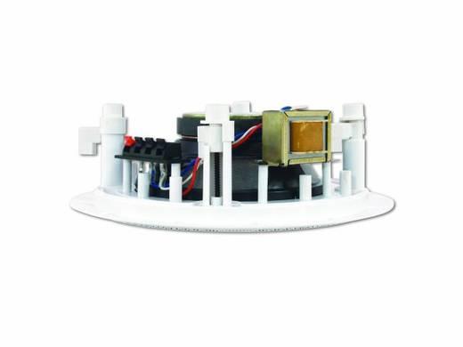 Inbouwluidspreker Omnitronic CS-6 5 W 100 V Wit 1 stuks