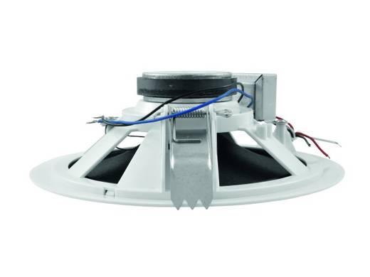 Omnitronic CSP-6 Inbouwluidspreker