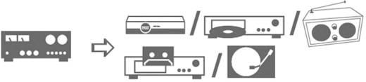 SpeaKa Professional Cinch Audio Kabel [2x Cinch-stekker - 2x Cinch-stekker] 5 m Blauw Vergulde steekcontacten