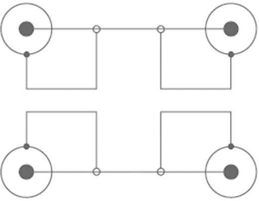 SpeaKa Professional Cinch Aansluitkabel Cinch-stekker / Cinch-stekker Blauw