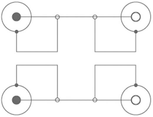 SpeaKa Professional Cinch Verlengkabel Cinch-stekker/Cinch-koppeling Zwart