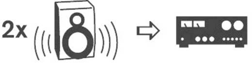 SpeaKa Professional Luidspreker Audio Adapter [1x Luidspreker-stekker - 2x Luidspreker-koppeling] Zwart