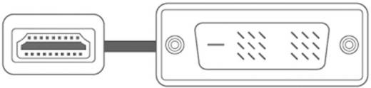 DVI / HDMI Aansluitkabel SpeaKa Professional 50217 [1x DVI-stekker 18+1-polig - 1x HDMI-stekker] 2 m Wit