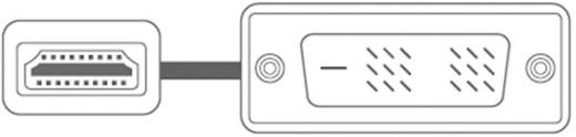 DVI / HDMI Aansluitkabel SpeaKa Professional 50218 [1x DVI-stekker 18+1-polig - 1x HDMI-stekker] 3 m Wit