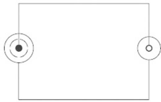 Adapter BNC / Cinch [1x BNC-stekker - 1x Cinch-koppeling] Zilver SpeaKa Professional
