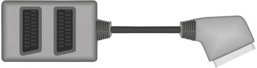SCART verdeler [1x SCART-stekker - 2x SCART-bus] 0.20 m Zwart SpeaKa Professional