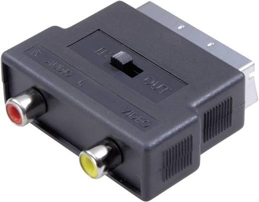 SCART / Cinch Adapter [1x SCART-stekker - 2x Cinch-koppeling] Zwart Met omschakelaar SpeaKa Professional