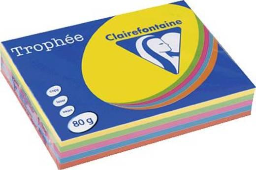 Trophee papier diverse kleuren pastel